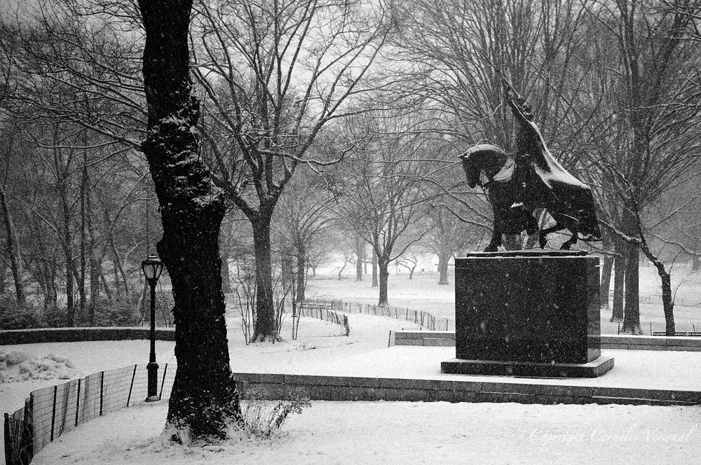 King Jagiello (the Polish King) during a snow storm; Central Park, New York City