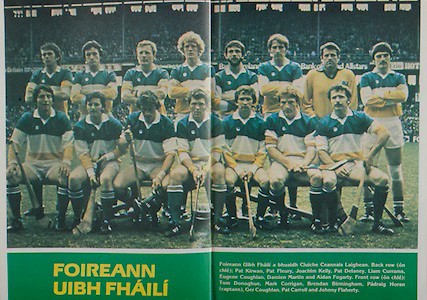 All Ireland Senior Hurling Championship Final, .Galway v Offaly, .06.09.1981, 09.06.1981, 6th September 1981,.Offaly 2-12, Galway 0-15,.06091981AISHCF,..Offaly, back row, Pat Kirwan, Pat Fleury, Joachim Kelly, Pat Delaney, Liam Currams, Eugene Coughlan, Damien Martin, Aidan Fogarty, Front row, Tom Donoghue, Mark Corrigan, Brendan Birmingham, Padraig Horan captain, Ger Coughlan, Pat Carroll, Johnny Flaherty,