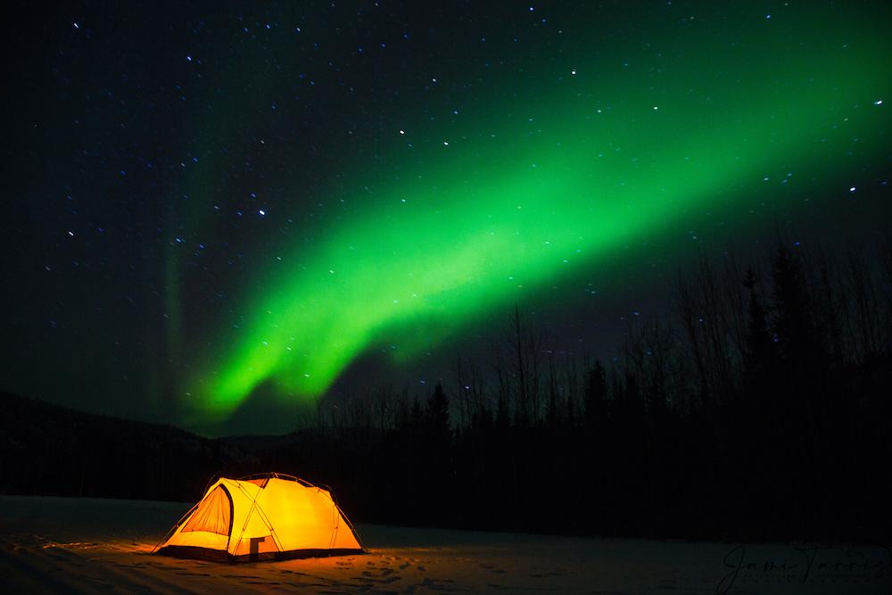 An illuminated tent sits under the stars and aurora borealis in the far north of Alaska, Alaska,USA