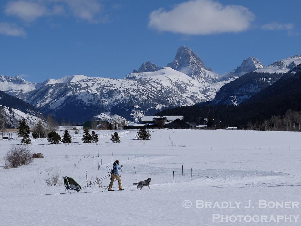 Nordic track in Alta, Wyoming.