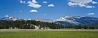 Yosemite national park, California - Tuolumne meadows in summer
