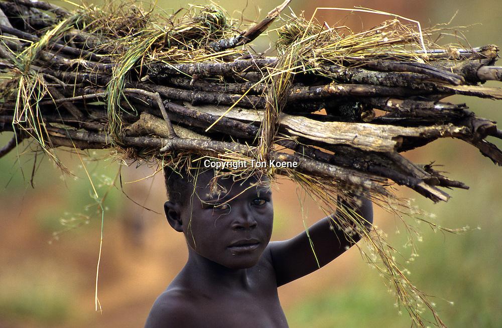 firewood in uganda