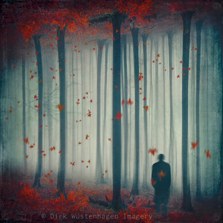 Photomanipulation of a man in reflected forest with falling leaves