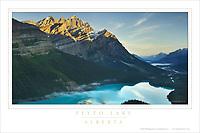 Peyto Lake Alberta Poster