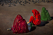 Women selling bird food to tourists in the square of Amer on 4th February 2018 in Jaipur, Rajasthan, India.