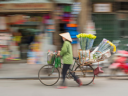 Asia, Vietnam, Hanoi, old quarter. Woman in traditional Non La conical hat walking with bicycle loaded with flowers. Motion blur.