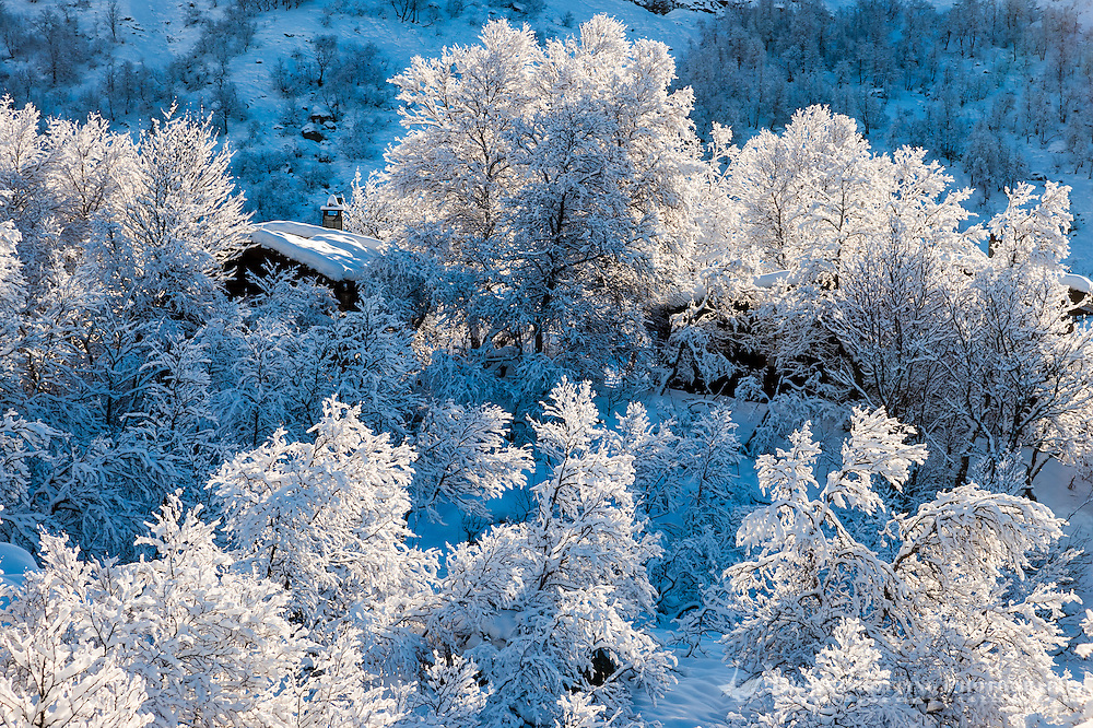 Norway, Sirdal. The first snow of the season.