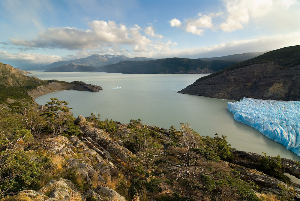 The toe of the Grey Glacier and Lago Grey in Torres Del Paine National Park, Patagonia, Chile.