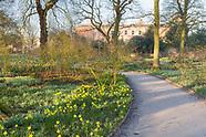 Dunham Massey - The Winter Garden in February