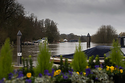 The river in full flood at Henley On Thames, Oxfordshire as heavy rains in the River Thames catchment area and saturated ground causes the river to rise to within inches of bursting its banks.. April 02 2018.