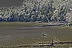 19 September 2012:   The south end of Evergreen Lake, just north of where Barred Owl Trail would normally end.  Due to the 2012 drought the trail just leads to the dry lake bed and allows one to walk to several of the normally unreachable islands.<br /> This image was produced in part utilizing High Dynamic Range (HDR) processes.  It should not be used editorially without being listed as an illustration or with a disclaimer.  It may or may not be an accurate representation of the scene as originally photographed and the finished image is the creation of the photographer.