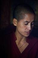 A Buddhist Nun during prayers at Giabong Village, Himachal Pradesh, India