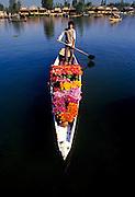 A flower vendor in his shikara boat on Lake Dal in Shrinagar Kashmir India
