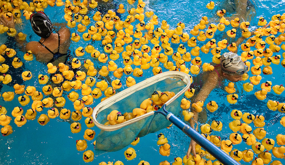 After the winners were picked it is time to clean up the pool Saturday during the Tom Dinsdale Automotive/Leadership Tomorrow Duck Pluck at the Grand Island YMCA . About 6,600 ducks were adopted out for the 10th annual Leadership Tomorrow fundraiser, according to Tammy Morris, executive director of Leadership Tomorrow. (Independent/Matt Dixon)
