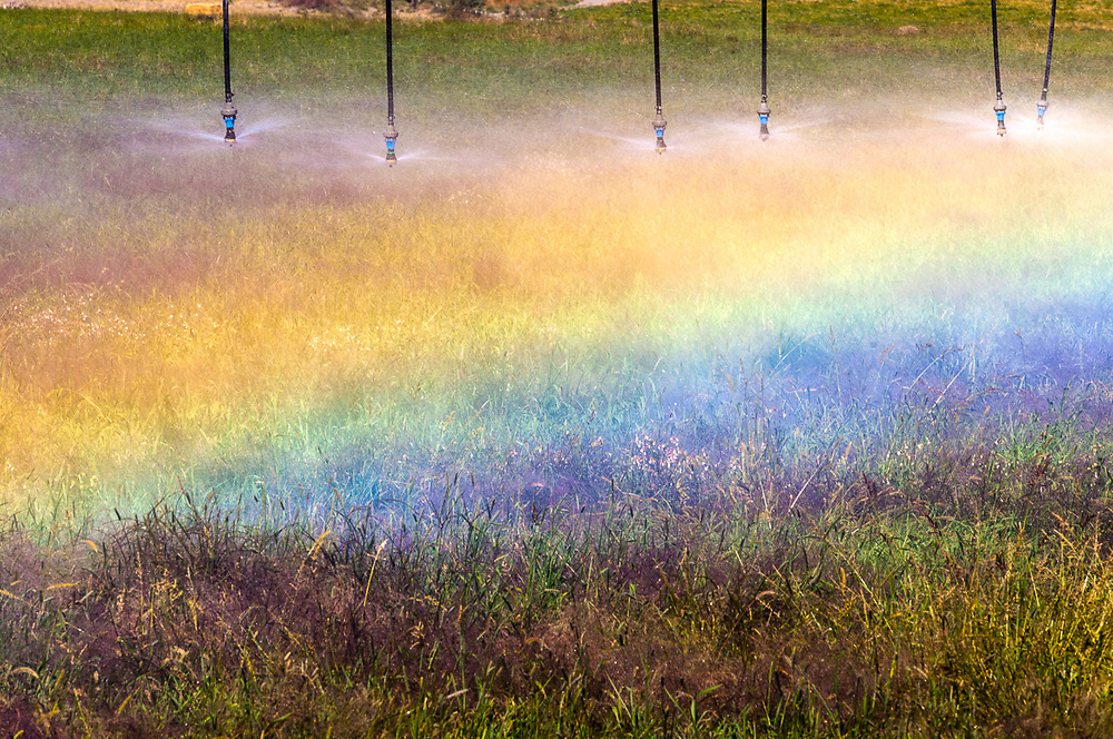 Irrigation sprinkler system and rainbow, afternoon light, September, Columbia River Basin, Grant County, Washington, USA