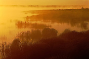 Whirlpool Lake at sunrise with fog<br /> Riding Mountain National Park<br /> Manitoba<br /> Canada