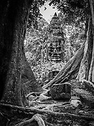 Image of the Victory Gate, to the east of Angkor Thom; Angkor Wat Archeological Park, Siem Reap, Cambodia.