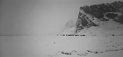 Hestar að vetri undir Eyjafjöllum / Horses during winter at Eyjafjoll, on the south coast