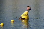 Nederland, nijmegen, 31-8-2019Mensen trekken naar de oevers van de waal en de nieuwe spiegelwaal in het rivierpark aan de overkant van Nijmegen . Het recreatiegebied is een aanwinst voor de stad en omgeving. Door de langdurige droogte en hoge temperaturen is het een aantrekkelijk recreatiegebied vlak bij de stad . .Jongeren, jongens, spelen met een markeringsboei .Foto: Flip Franssen