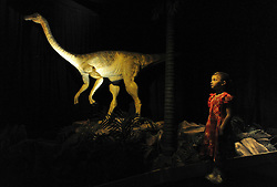 © licensed to London News Pictures. LONDON UK. 20/04/11. Adele Clarke looks at the animatronic Gallimimus exhibit. Dinosaurs make a dramatic return to the London's Natural History Museum in this summer's family blockbuster exhibition, Age of the Dinosaur. .See special instructions for usage rates. Photo credit should read Stephen Simpson/LNP