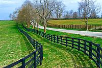 Fence lines of horse farms, Pisgah Pike, Versailles (near Lexington), Kentucky USA