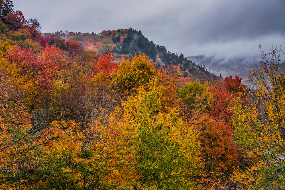Fall foliage and misty mountaintops, in a wide range of fall colors, Searsburg, VT