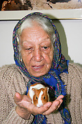 Israel, Rehovot, Old age day care centre pensioner taking care of a pet hamster as part of their daily activities