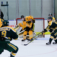 1st year defence man Carter Hansen (15) of the Regina Cougars in action during the Men's Hockey Home Game on November 5 at Co-operators arena. Credit: Arthur Ward/Arthur Images