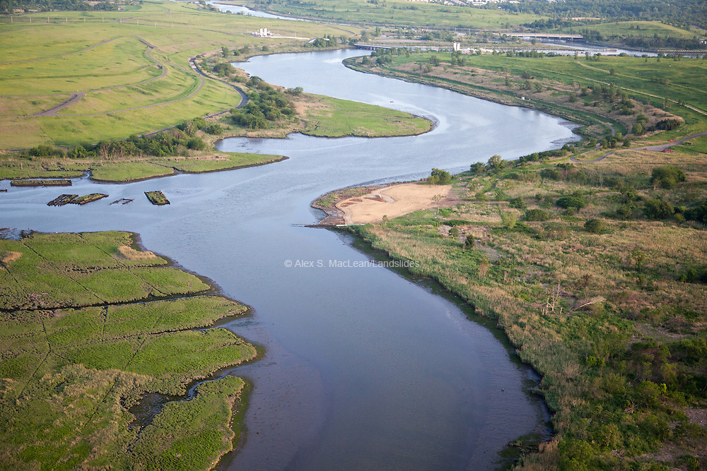 Wetland habitat by Fresh Kills Landfill