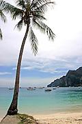 The beach at Koh Pi PI, Thailand