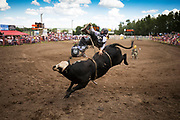 during the Daines Rodeo in Innisfail, Alberta, Sunday, June 18, 2017.Todd Korol/The Globe and Mail