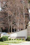 Scripps College in Claremont California