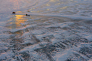 As the sun sets ice fishermen come in from the bay of Green Bay after a day of ice fishing.