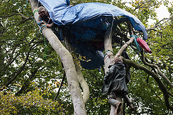 Daniel Marc Hooper, better known as environmental activist Swampy, secures a rope from a makeshift tree house at a wildlife protection camp in ancient woodland at Jones' Hill Wood on 5 October 2020 in Aylesbury Vale, United Kingdom. The Jones' Hill Wood camp, one of several protest camps set up by anti-HS2 activists along the route of the £106bn HS2 high-speed rail link in order to resist the controversial infrastructure project, is currently being evicted by National Eviction Team bailiffs working on behalf of HS2 Ltd.