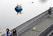 Nederland, Den Bosch, 17-12-2016Kunstwerk gerelateerd aan het werk van de schilder Jeroen Bosch in het water van de singelgracht.Foto: Flip Franssen