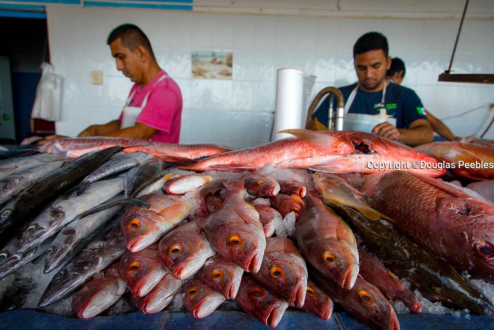 Fish Market, Sunday Market, Marina Riviera Nayarit,  La Cruz de Huanacaxtle, Bandera Bay,  Riviera Nayarit, Nayarit, Mexico