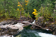 Fall colours and the Little Qualicum River below the lower falls in Little Qualicum Falls Provincial Park on Vancouver Island, British Columbia, Canada