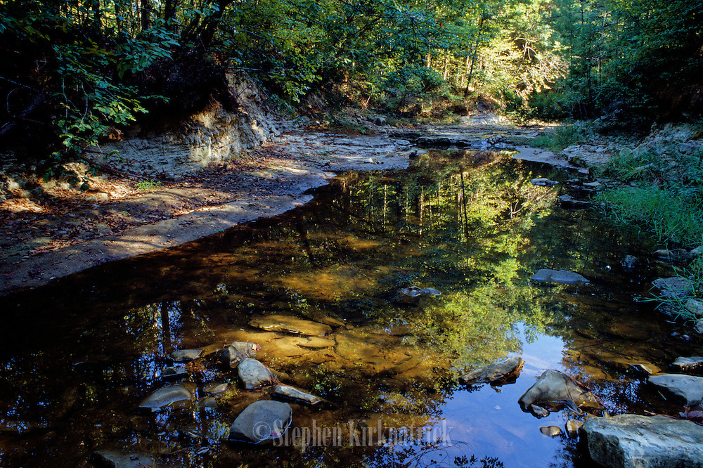 Owen's Creek Reflections - Mississippi.