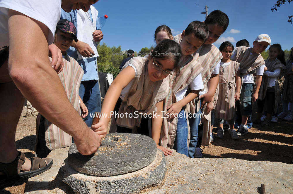Children experience the use of a hand operated millstone to grind wheat
