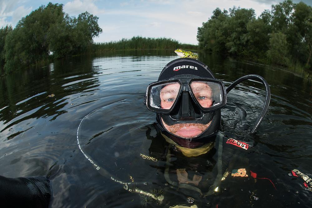 A pool Frog (Pelophylax lessonae) join underwater photographer Magnus Lundgren, Crisan, Danube Delta, Romania.