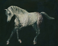 Horses are graceful and are also called noble animals. This painting of an Arabian horse doing a dressage exercise will certainly add value to any interior. Horses are unmissable in a rural environment. Not only in a country house will this painting of a horse come into its own. Also in a city environment horses can add just that little bit more to your interior. –<br /> -<br /> BUY THIS PRINT AT<br /> <br /> FINE ART AMERICA / PIXELS<br /> ENGLISH<br /> https://janke.pixels.com/featured/2-horses-white-horse-doing-dressage-exercise-jan-keteleer.html<br /> <br /> <br /> WADM / OH MY PRINTS<br /> DUTCH / FRENCH / GERMAN<br /> https://www.werkaandemuur.nl/nl/shopwerk/Paard-lopend/770282/132?mediumId=1&size=70x55<br /> –<br /> -