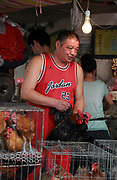 A vedor wearing an Air Jordan jersey pulls out a live chicken to show a customer at a market in Shanghai, China on 31 July 2012. Bird flu continues to threaten China's public health.