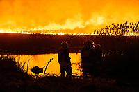 Biebrzanski Park Narodowy, 22.04.2020. Olbrzymi pozar w Biebrzanskim Parku Narodowym. Od niedzieli ( 19.04 ) plonie tam ok. 1400 hektarow lak, torfowisk, trzcinowisk i lasu. Gaszenie pozaru moze potrwac nawet pare dni. BPN jest najwiekszym polskim parkiem narodowym, maja tu swoja ostoje m.in losie oraz liczne gatunki ptakow. W nocy z 21/22.04 zagrozona przez ogien byla wies Dawidowizna N/z strazacy nie dopuszczaja do przejscia ognia na druga strone rzeki Biebrza fot Michal Kosc / AGENCJA WSCHOD