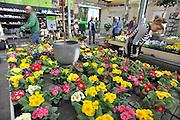 Nederland, Beneden-Leeuwen, 24-3-2012Lente bij tuincentrum Groenrijk.Foto: Flip Franssen/Hollandse Hoogte