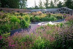 General view of the rose garden at Wynyard Hall. Mixed planting includes  roses, sanguisorba, catmint, phlomis and foxgloves.
