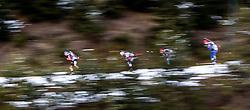 13.12.2014, Biathlonarena, Hochfilzen, AUT, E. ON IBU Weltcup, Staffel, Herren, im Bild Feature, v.l.: Erik Lesser (GER), Daniel Mesotitsch (AUT), Maxim Tsvetkov (RUS), Michal Slesingr (CZE) // during Mens Relay of E. ON IBU Biathlon World Cup at the Biathlonstadium in Hochfilzen, Austria on 2014/12/13. EXPA Pictures © 2014, PhotoCredit: EXPA/ JFK