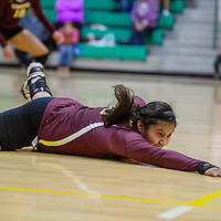 Tohatchi Cougar Shaundina Whitney (12) dives to save a shot from the Newcomb Skyhawks Tuesday at Newcomb High School.