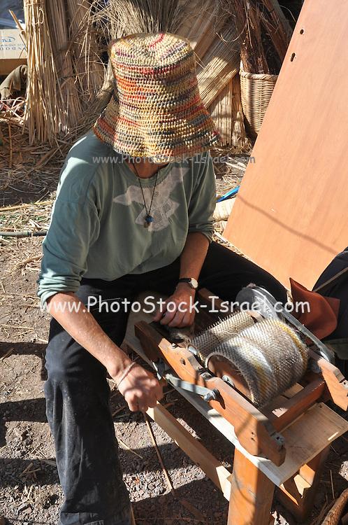Woman Carding Sheep's Fleece on a drum-carding machine