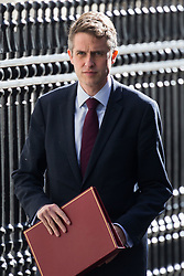 Defence Secretary Gavin Williamson arrives at 10 Downing Street to attend the weekly cabinet meeting.