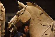 """Horse detail of the """"Terracotta Army"""" in Xian, Shaanxi, China"""